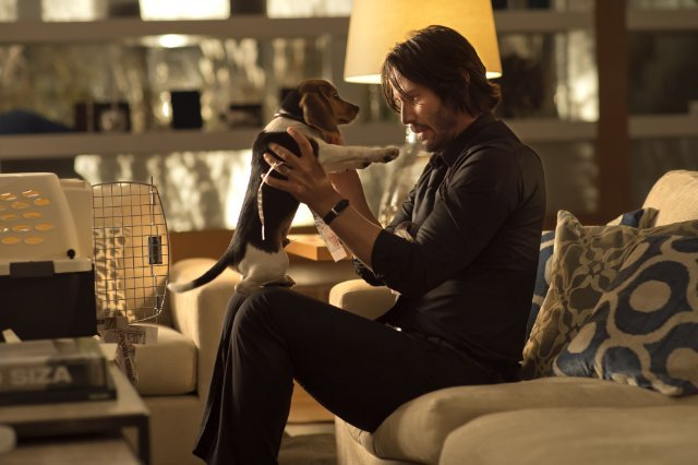 http://moviemag.ir/images/phocagallery/1/John_Wick/thumbs/phoca_thumb_l_3.jpg