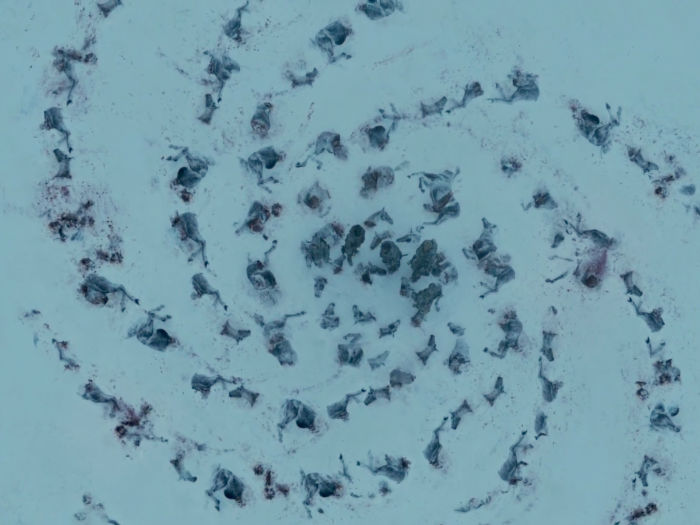 this spiral was seen on seasons three and five and seems to be a symbol for the children of the forest and the white walkers w700
